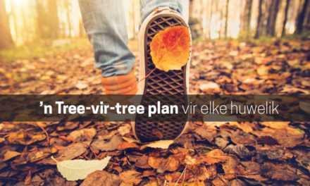 'n Tree-vir-tree plan vir elke huwelik